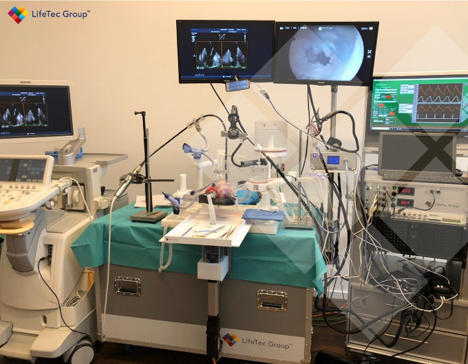 Looking back to Wiesbaden were our Cardiac BiSoimulator Platforms were successfully used to support device training for clinicians