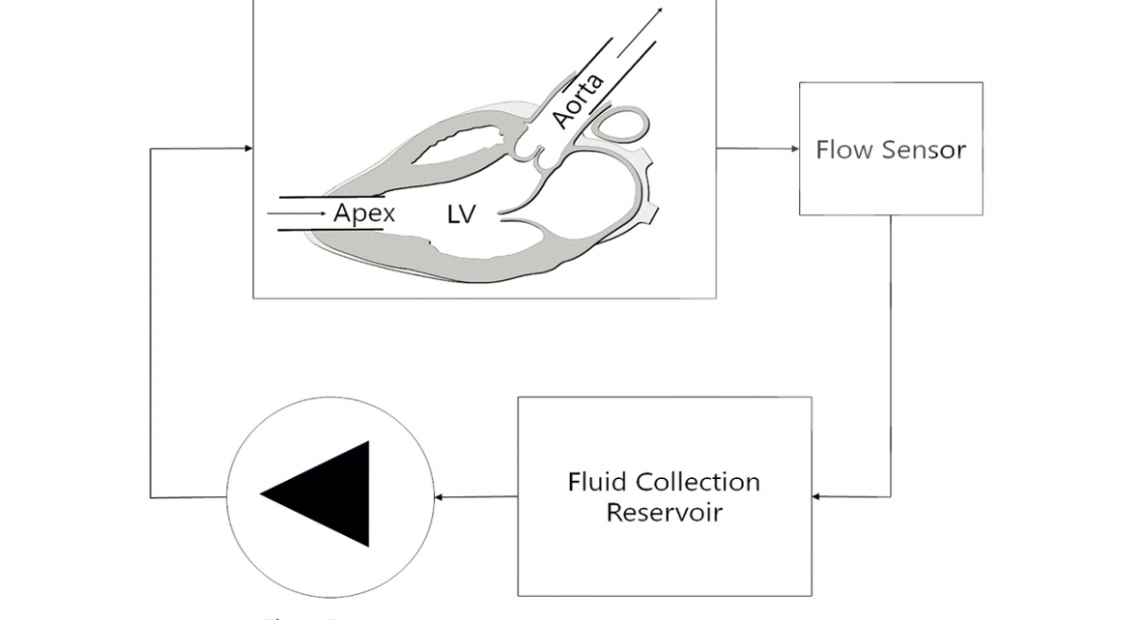 a Schematic representation of the mock circulation loop for continuous flow measurements